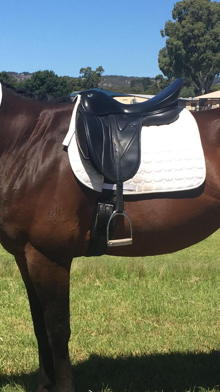 Wow saddle