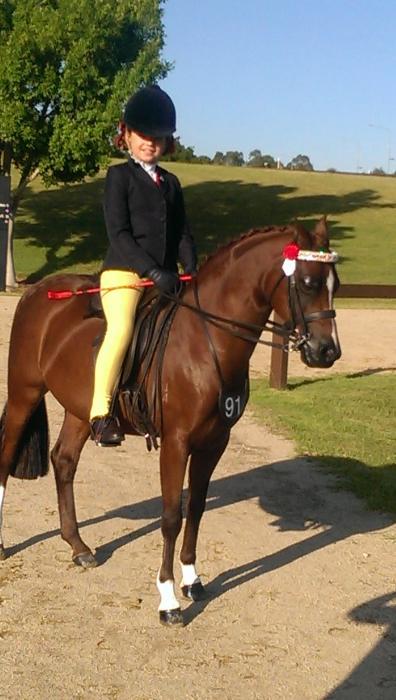 Genuuine Childs first ridden pony schoolmaster