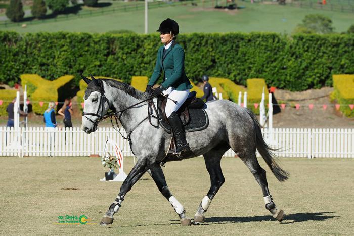 Quiet & Careful, Super Young Horse