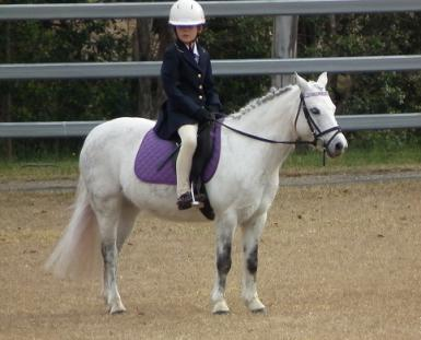 Waiting for dressage test at an ODE