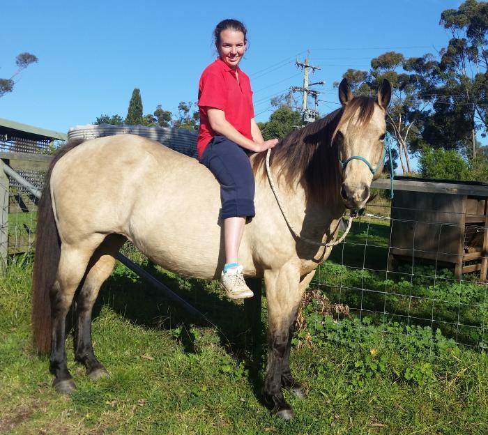 Sweet buckskin mare