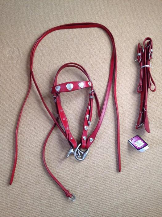 CherryRed Western Bridle and Matching Breastplate