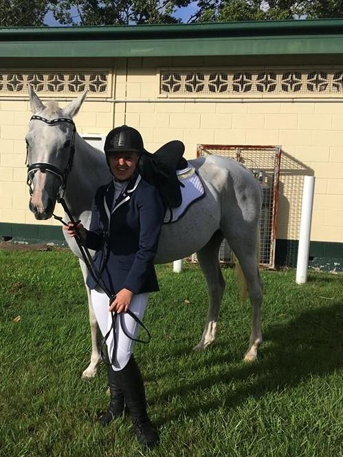 Kind, Gentle Senior Stockhorse X Arab Mare