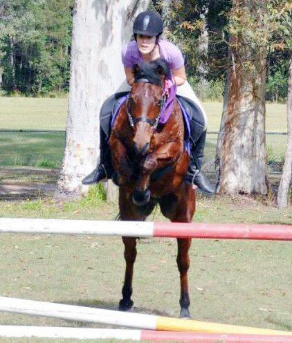 DREAM QH X ALLROUNDER KIDS, TEENS THE LOT