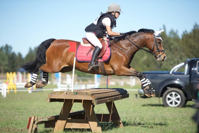 Super Performance Pony