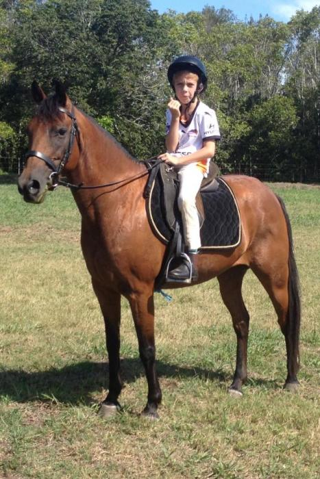 What A Gem - QUIET KIDS PONY Approx 13-13.2hh