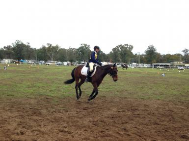 North West Equestrian Expo