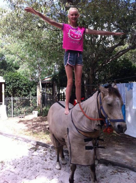 Super Pony Club Mount