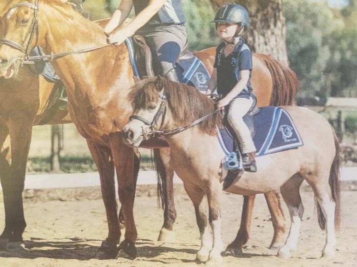 Special little pony - Sweetie