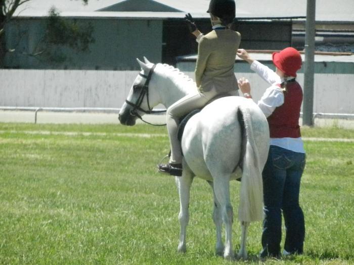 Kylandee Puk - Genuine Child's Pony