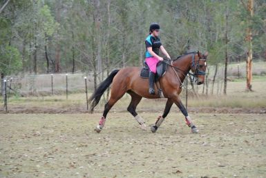 Emma being used for riding lessons