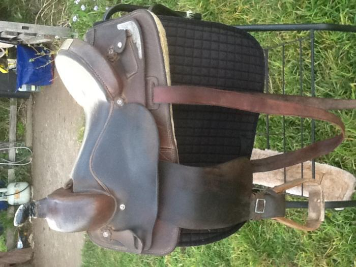 Geoff Hutson saddle