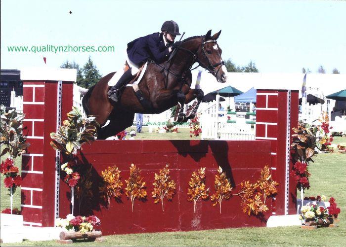 www.qualitynzhorses.com PRESENTS Exp 3* Eventer !!