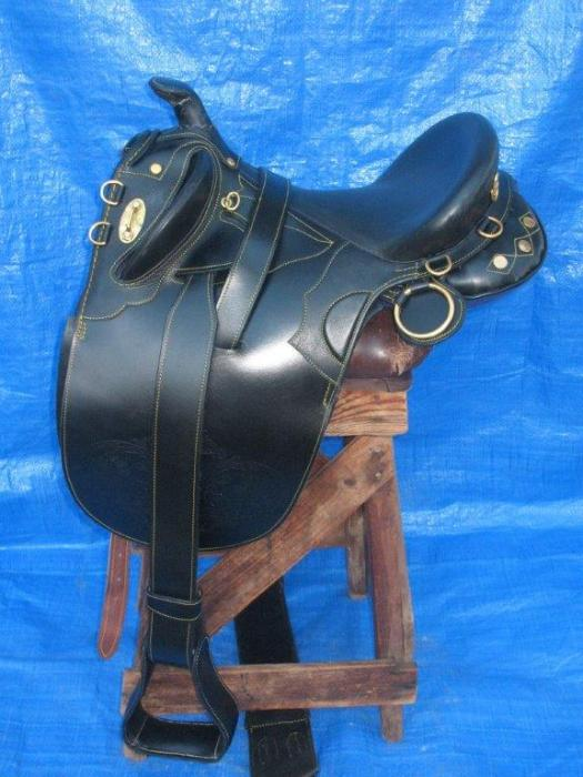 Black Leather Poley Saddle with a Horn