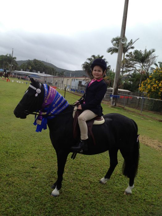 Outstanding Quiet Pony - Must sell ASAP