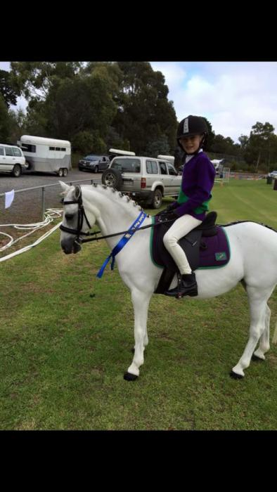 The ultimate first pony 11.2hh 12 y/o