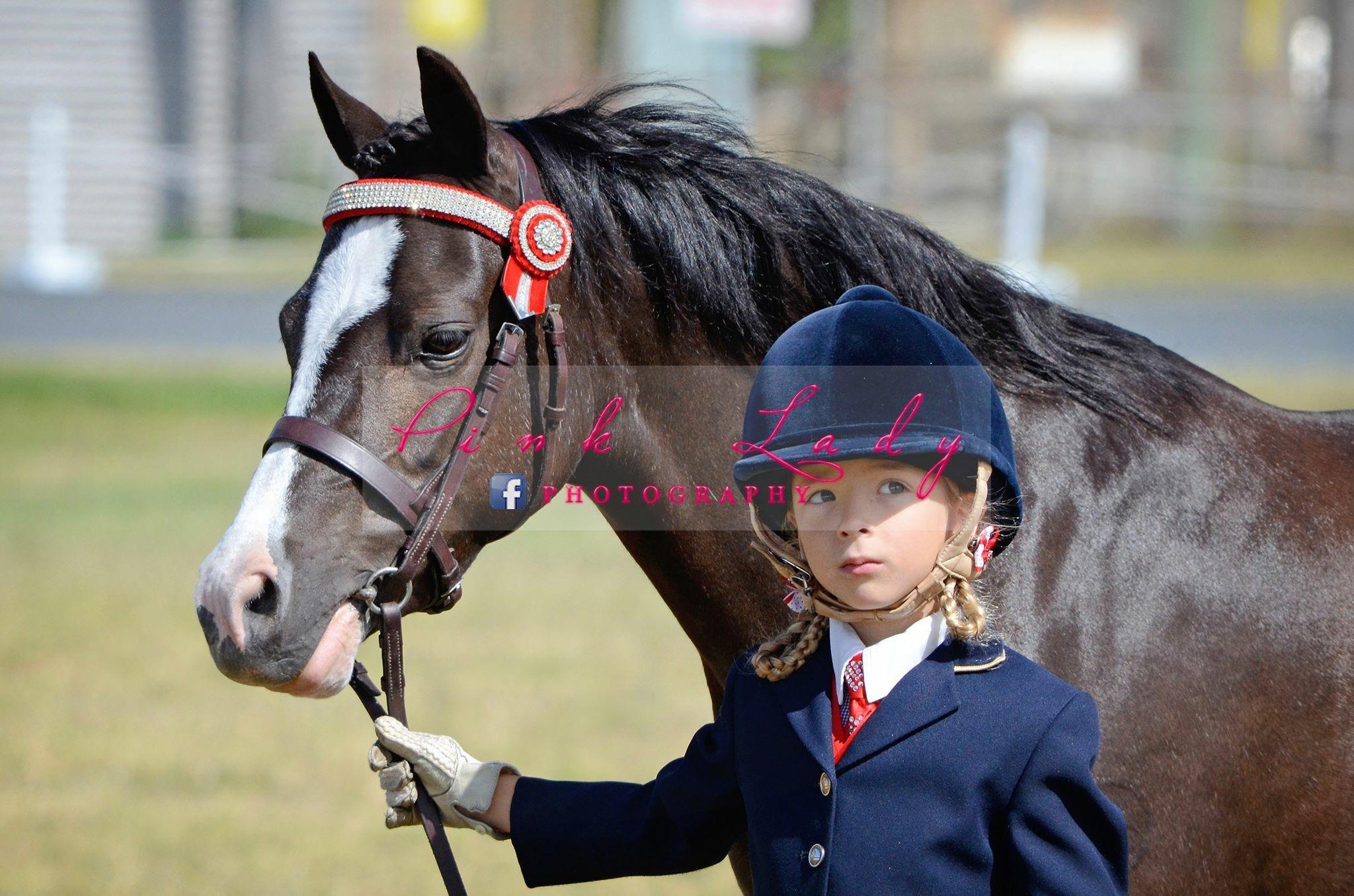 Genuine Child's Show Pony