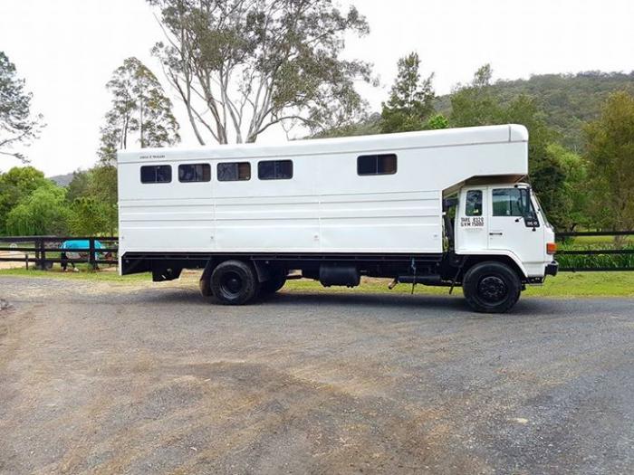 Isuzu 6 Horse truck Great TRUCK