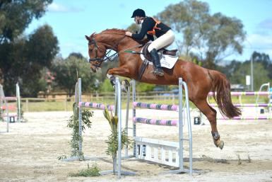 Half sister, Isabella, is at 2** level eventing. Photo: Main Event