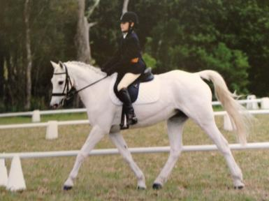 Scores over 70% in dressage