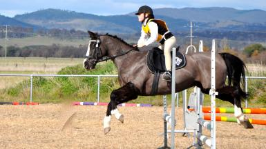 Bungendore showjumping 2014: 2nd place