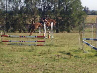 Jump Practice 2