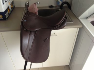 Stubben Maestoso Deluxe Saddle Dressage And Show Horsezone