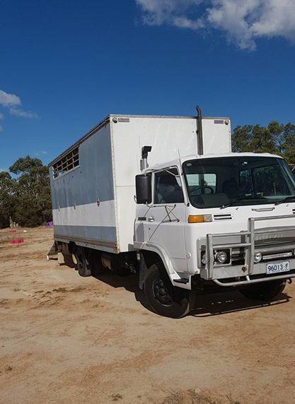 84' model Isuzu SBR 4 horse truck