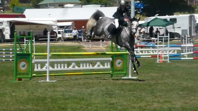 Cooma Showjumping Festival