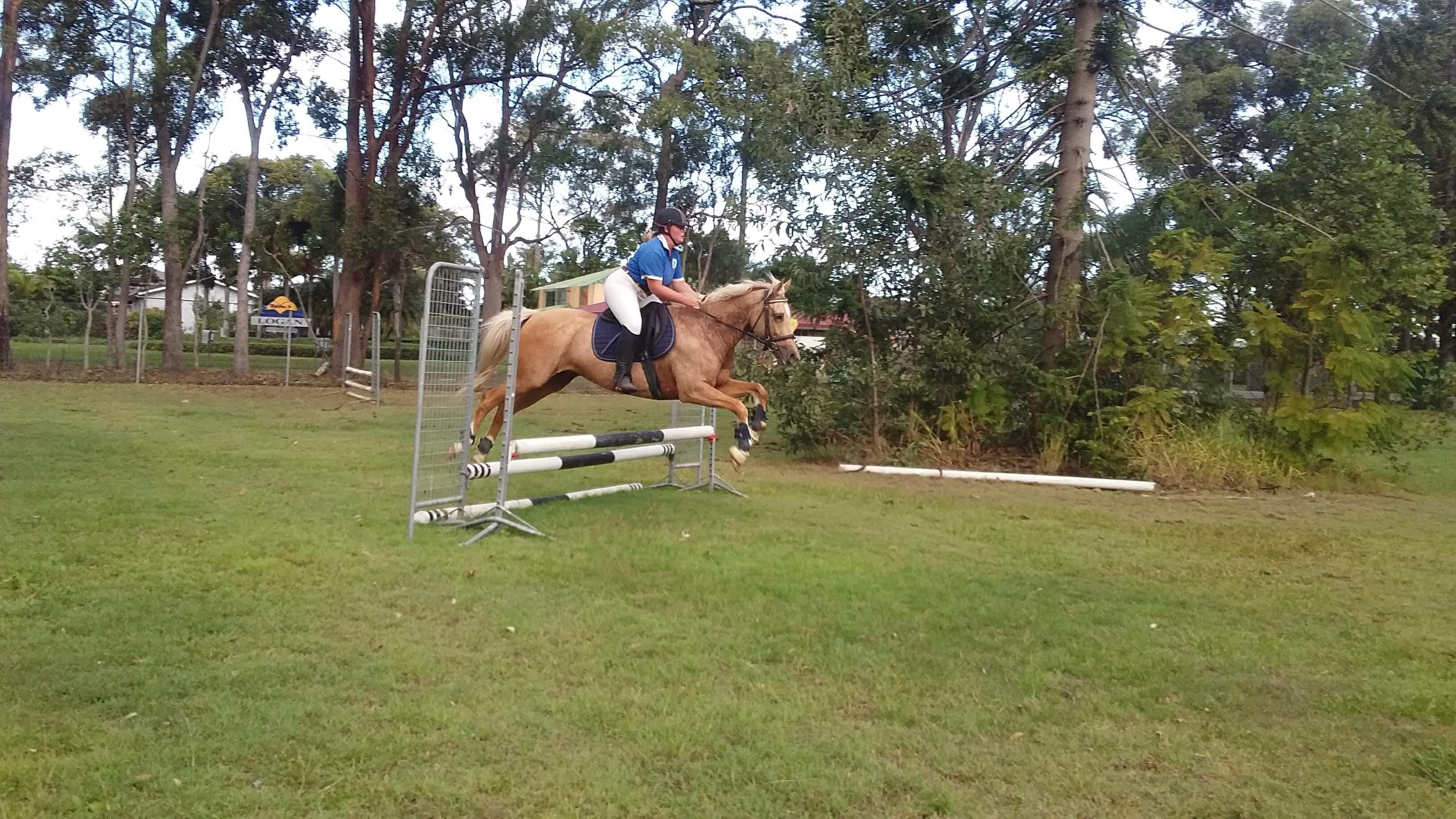 Registered, jumping, sporting machine