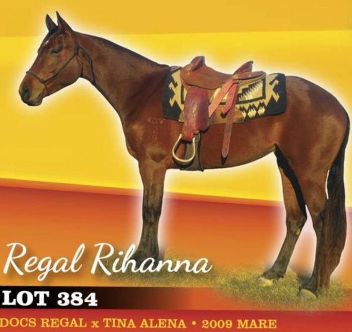 Docs Regal Mare Reduced Price for Quick Sale