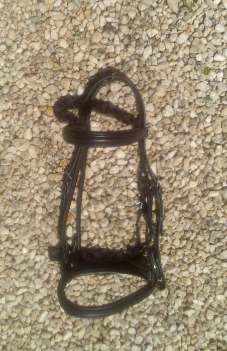 Collegiate Cob Bridle Head