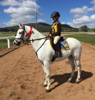 Cricket at Pony Club Combined Training comp 2015