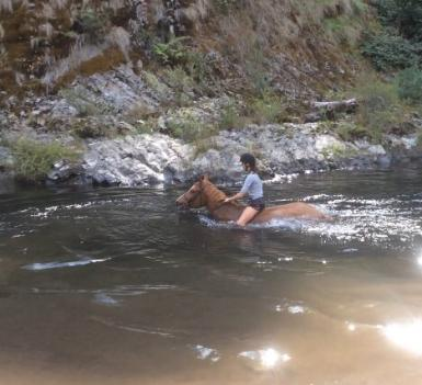 Swimming at High Country