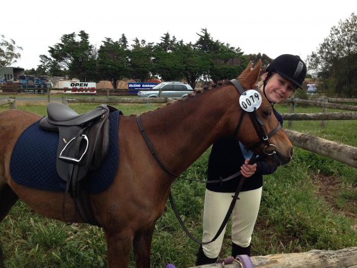 Mother's Dream Pony - Bombproof, Competitive & Fun