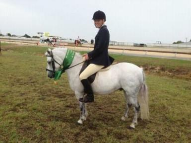 Reserve Champion at Maitland Show 2014