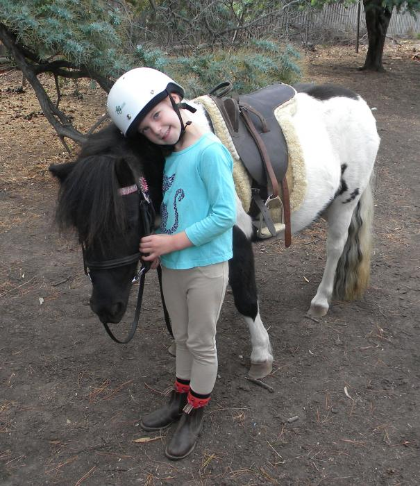 Kids Pony, reg. APSB 7yo Piebald mare. - Shetland - Horsezone