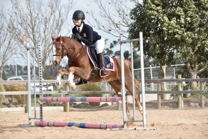 Outstanding 12hh Show Jumping Pony