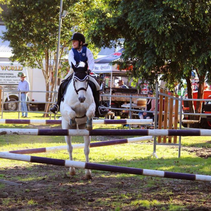 Safe Competitive Pony