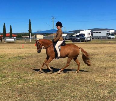 11 yo jockey. First ever ride on him!