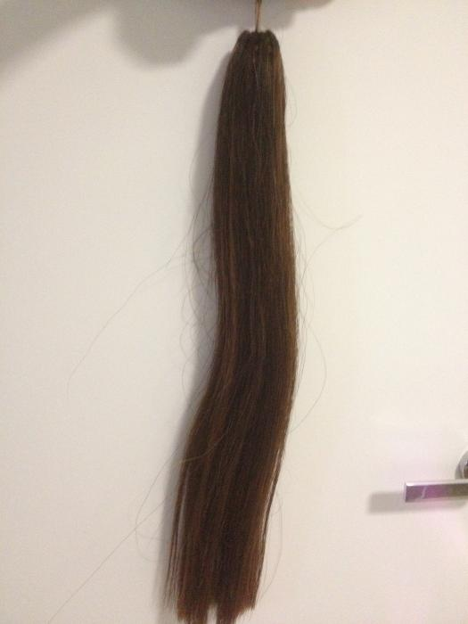 False Tail - Chestnut