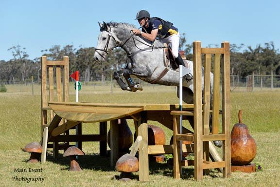 ISH Stallion 2* Eventer Highland McGuire