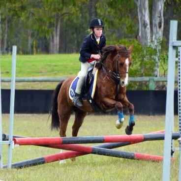 Bella-Fun, Competitve Childs Pony