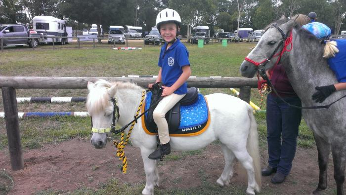 Kid's First Pony       SOLD PENDING PAYMENT