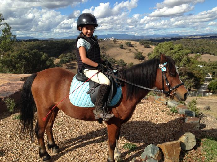 Fantastic true beginners pony