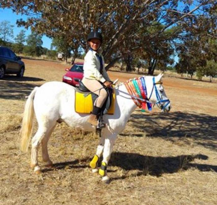 Fun, safe, all-round beginners pony