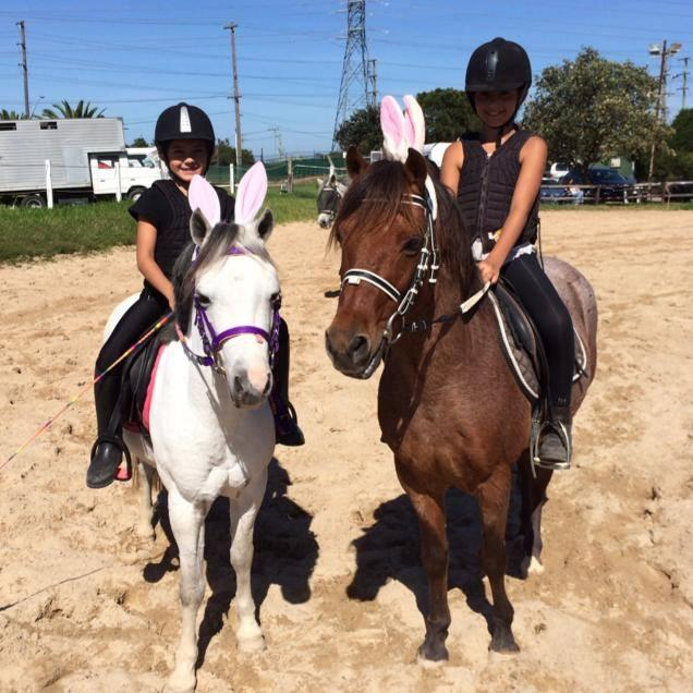 Beginner/First Pony