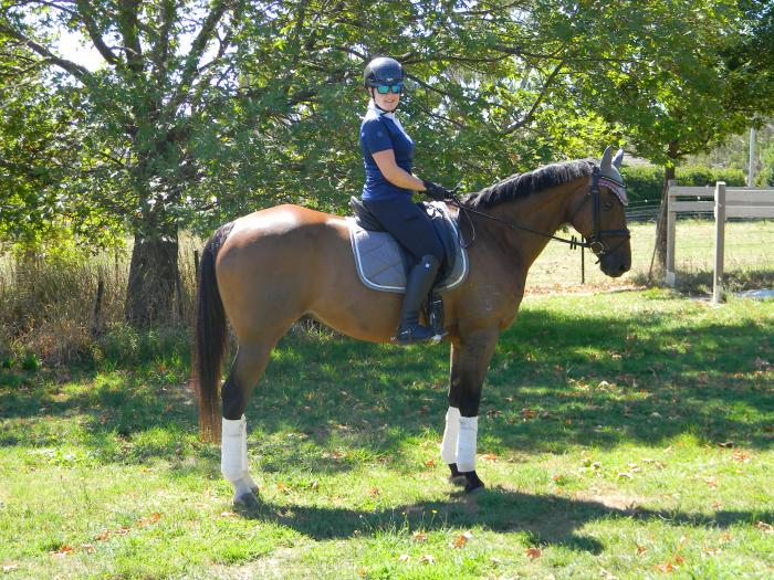 Stunning, quiet and eligible for Newcomer