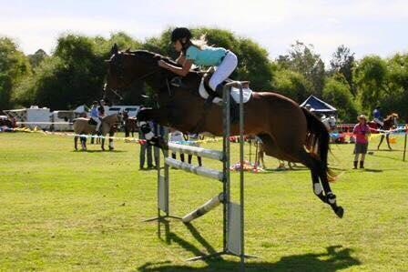 Perfect schoolmaster allrounder - One in a million