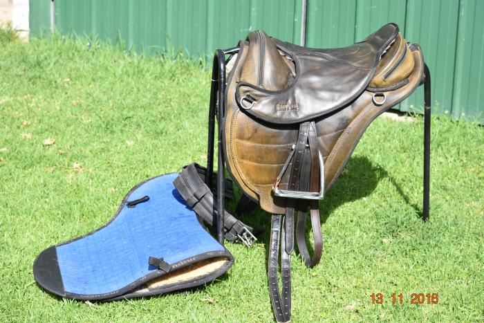 Barefoot Treeless Saddle